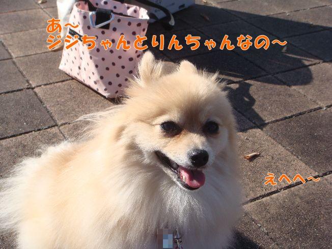 10_27_03.jpg