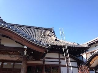 IMG_0133_yane_01.jpg