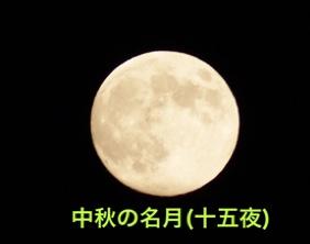 fc2blog_201411052156278a4.jpg
