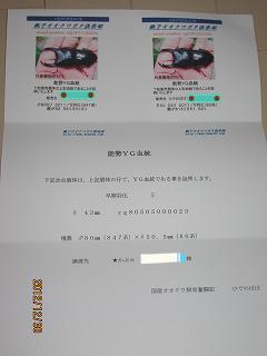 20121230194430d3b.png
