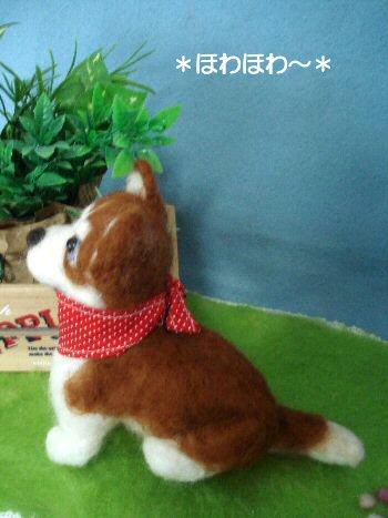 ハスキーちゃん子犬2