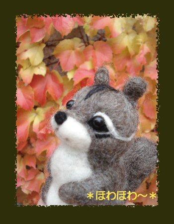 秋のリス3