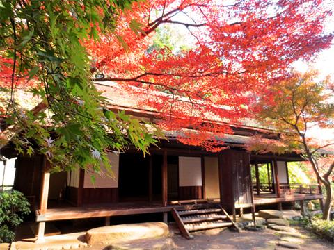 2012年 横浜・三溪園の紅葉